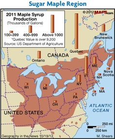 Geography in the News: Maple Syrup Time Maple Sugar Region - Where is Maple Syrup produced? Cheap Hobbies, Hobbies For Men, Fun Hobbies, Hobbies Creative, Maple Syrup Taps, Maple Syrup Evaporator, Maple Syrup Recipes, Sugar Bush, Us Department Of Agriculture