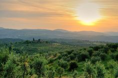 Trekking in Tuscany: Paths Near Florence Florentine Gardens, Romantic Italy, Walking Paths, Slow Travel, Northern Italy, Tuscany Italy, Sicily, Trees To Plant, Trekking