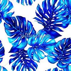 Blue Monstera Leaves Pattern