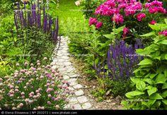 Pfad im Blumengarten