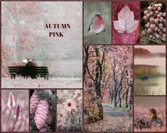 '' Autumn Pink '' by Reyhan Seran Dursun...I am thinking a pink day, what about you?