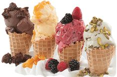 Gelato is Italian ice cream similar to American ice cream just made with different proportions making it smooth and creamy. Italian Ice Cream, Ice Pops, Homemade Ice Cream, Frozen Treats, Pumpkin Spice, Italian Recipes, Protein, Yummy Food, Diet
