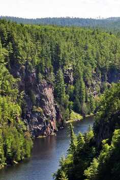 Hiking at the Barron Canyon Trail in Algonquin Park: an easy, quiet trail with spectacular views of the canyon and river below. Algonquin Park, Algonquin Camping, Canadian Travel, Canadian Rockies, Ontario Parks, Ontario Travel, Best Vacation Spots, Get Outdoors, Adventure Is Out There