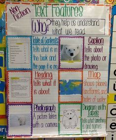 Text features for non-fiction, somewhat color-coded. First grade anchor chart.