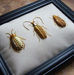 Goldwork Embroidery Beetles. Three beetle specimens rendered in Gold Work and applique using metal threads, leather, silk thread and glass beads. Inspired by the Scarab, Longhorn and Great Diving Beetle. They are worked on medium weight calico and mounted in a black 6 x 8 frame