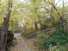 Cette deuxième journée de visite fut consacrée à la visite de Central Park. Et là, je dois dire que j'ai vraiment eu un énorme coup de cœur pour le poumon vert deManhattan! Loindu tumulte et dub...