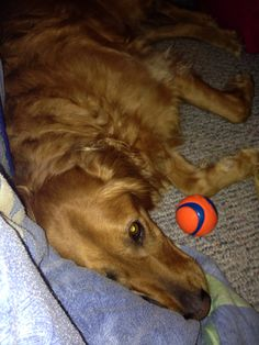 Too much ball playing
