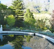 Old Nectar Gardens, Stellenbosch, Cape Town, Western Cape, South Africa