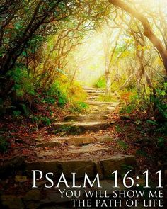 Psalm always has comfort for us.