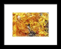 Product Framed Print featuring the photograph Intimate Sunrise by Vanessa Branton