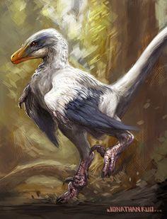 jonathan kuo artwork: velociraptor Source by bigbluefox Dinosaur Drawing, Dinosaur Art, Dinosaur Fossils, Dinosaur Images, Dinosaur Pictures, Prehistoric Wildlife, Prehistoric Creatures, Dinosaure Herbivore, Feathered Dinosaurs