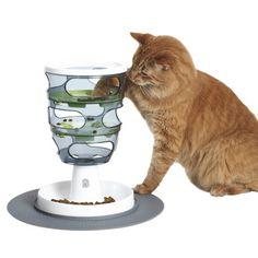 Image result for cat enrichment