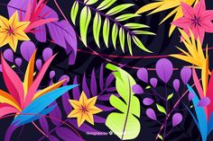 Download Natural Background With Colorful Exotic Flowers for free