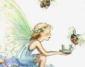 fée papillon et abeille