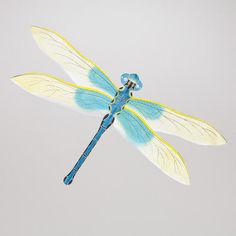 One of my favorite discoveries at WorldMarket.com: Dragonfly Kite
