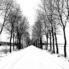lost road by augenweide on DeviantArt Winter Road, Winter's Tale, Winter Wonderland, Lost, Snow, Deviantart, Music, Outdoor, Nature