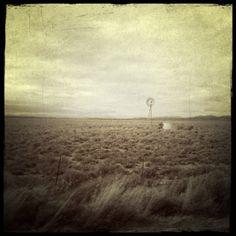 breath-taking #Karoo landscape - #mohair