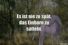 Es ist nie zu spät, das Einhorn zu satteln. ... gefunden auf https://www.istdaslustig.de/spruch/937 #lustig #sprüche #fun #spass