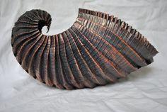 Copper open Nautilus