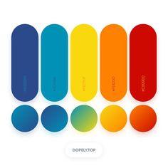 Dopely Colors #243  Color Palette 44BDB8 • 0091B5 • F8D90F • FE8200 • CE0900