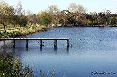 Lagoa - Mira