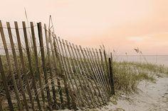 Beach Fence Sand dune Photography Atlantic seascape Nautical