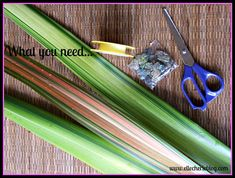 Have you heard of flax flowers? Not sure how to make them? Read on to see a step by step guide on how to make this beautiful flower that last a long time. Flax Flowers, Diy Flowers, Flower Diy, Palm Frond Art, Palm Fronds, Flax Weaving, Flax Plant, Maori Designs, Sensory Garden