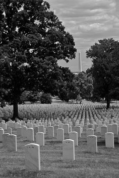 Arlington National Cemetery: thank GOD for these brave souls