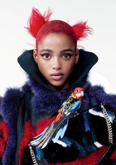 Red & Dark Blue & Fur & Parrot / Vogue.