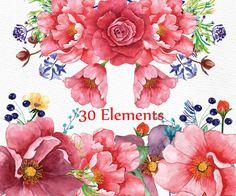 Clipart dell'acquerello: Floreali CLIPART