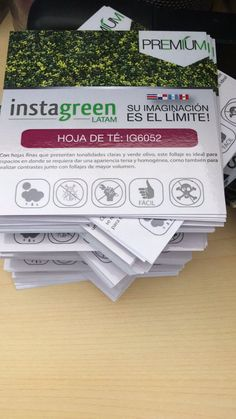 "InstagreenLatam on Twitter: ""#Instagreenlatam #jardinvertical #greenwall #follajesartificiales #panama #arquitectura #decoracion #espaciointerno #construccion #verde https://t.co/JhPIVamLK6"""