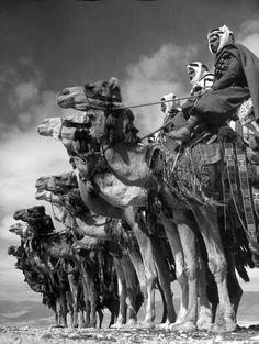 Margaret Bourke-White Bedouin camel cavalry in Dmeir, Syria. Photographed by Margaret Bourke-White, 1940 Documentary Photographers, Famous Photographers, Old Photos, Vintage Photos, Saudi Arabia Culture, Margaret Bourke White, Life Magazine, Photojournalism, Vintage Photography