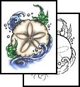 Tattoos Sand Dollar Ocean Seashell