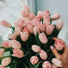 Discovered by Alina. Find images and videos about pink, beauty and flowers on We Heart It - the app to get lost in what you love. Beautiful Bouquet Of Flowers, My Flower, Fresh Flowers, Pink Flowers, Beautiful Flowers, Art Floral Japonais, Flower Aesthetic, Foto Art, Ikebana