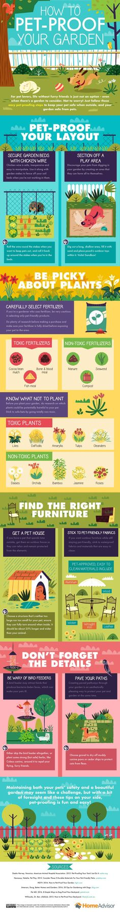 HomeAdvisor created this great infographic describing how to pet proof your backyard. Take into consideration fencing areas, common areas, and organic fertilizers to protect the garden and also your pets. Knowing which plants to grow in your yard will also help you keep your pets safe from illness. Take a look at how you can …