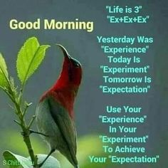 Ideas For Quotes Good Morning Positive Thoughts People Morning Positive Thoughts, Happy Morning Quotes, Good Morning Inspirational Quotes, Morning Greetings Quotes, Good Morning Messages, Good Night Quotes, Morning Sayings, Motivational Quotes, Night Qoutes