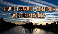by Fred Gunn, Contributor, ZenGardner.com Although there are scalar/orgone energy devices which help to transmute chemtrails, there is nothing more powerful than our own beautiful minds. As I have …