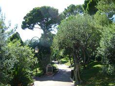Monaco! Princess Grace Botanical Garden