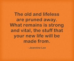 """""""The old and lifeless are pruned away. What remains is strong and vital, the stuff that your new life will be made from."""" Jeannine Lee #BeyondDivorce #DivorceTips #Inspiration"""