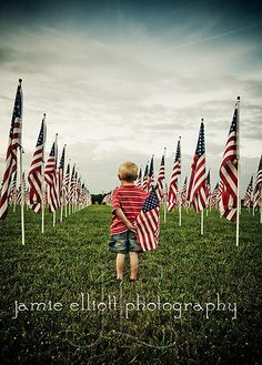 U.S flags standing like soldiers.