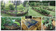 Straw Bale Gardening  http://www.realfarmacy.com/straw-bale-gardening-start-to-finish/