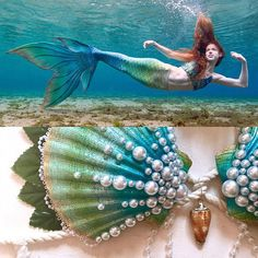Mermaid Clamkini Swimmable Mermaid Bra Top Any Color Mermaid Bra Top, Mermaid Shell, Seashell Bikinis, Professional Mermaid, Silicone Mermaid Tails, Real Mermaids, Paint Designs, Bra Tops, Sea Shells