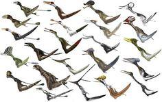 Mark Witton - Pterosaur family diversity quad-launch restorations.