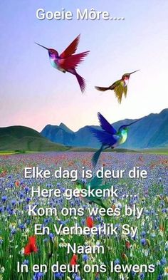 Good Morning Messages, Good Morning Wishes, Morning Images, Lekker Dag, Afrikaanse Quotes, Goeie More, Good Night Sweet Dreams, Good Night Quotes, Morning Greeting