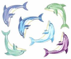 Colorful Dolphin Temporary Tattoos