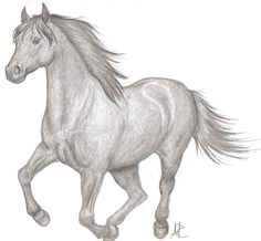 horse running drawings pencil horses drawing animal easy sketches simple deviantart realistic bing favourites chainimage together he 2006