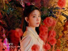 oh nope it's sakura Fandom, Kpop Girl Groups, Kpop Girls, Eyes On Me, Sakura Bloom, Sakura Miyawaki, Yu Jin, Japanese Girl Group, Soyeon
