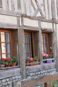 Normandie windows. Planters with Geraniums. I am planting geraniums next spring. They bloom non stop and are beautiful and get big. Coral and pinks.