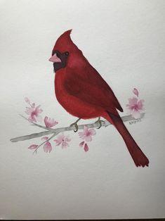 Red Cardinal bird, Original, watercolor painting, home decor, wall decor. Watercolor Paintings For Sale, Cardinal Birds, Kids Room, Wall Decor, The Originals, Red, Gifts, Inspiration, Animals