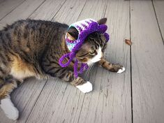 Crochet Cat Dog Hat Unique Handmade Purple Green Ombré Pet